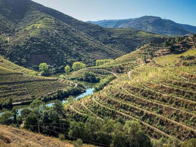 Vila Gale Douro tributary