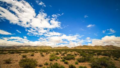 high desert Ruta 40 Salta