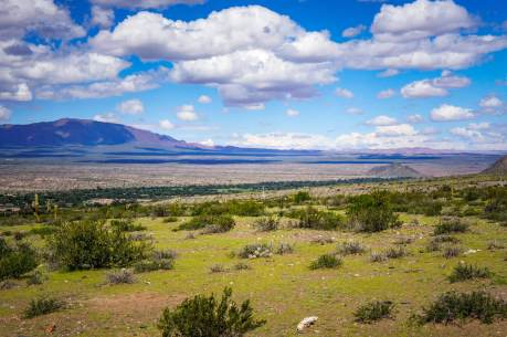 Altiplano views in Salta