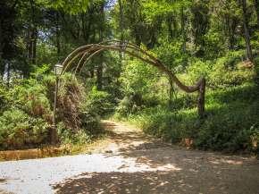 Pena Palace garden walkway