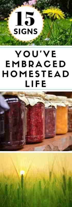 Have you fully embraced the homestead lifestyle? See if you can relate to these 15 things to which homesteaders can totally relate.