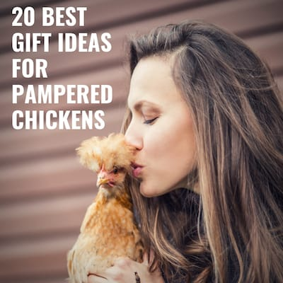 20 best Gift ideas for pampered chickens