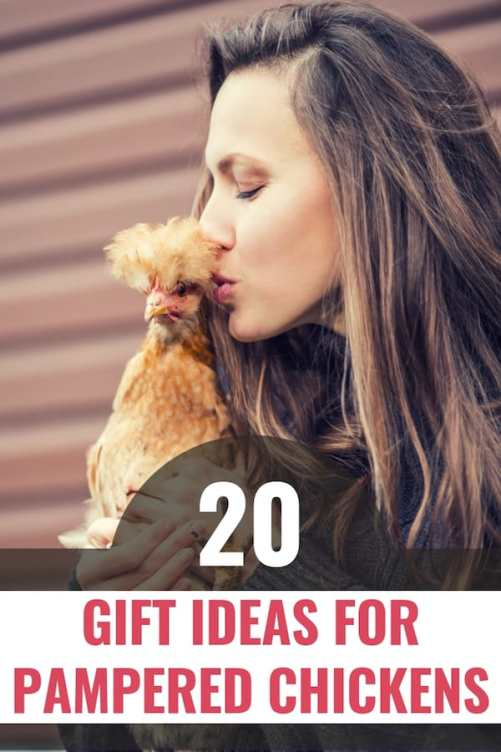 Woman kissing fluffy chicken text: 20 gift ideas for chickens pin