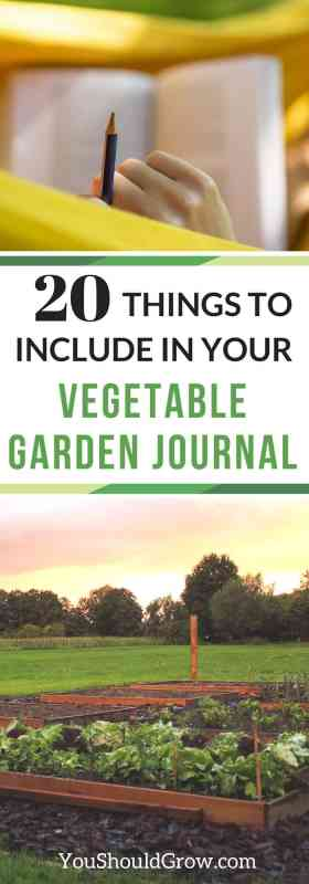20 things you should include in your vegetable garden journal.
