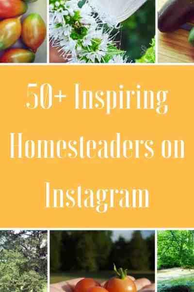 50+ Inspiring Homesteaders on Instagram