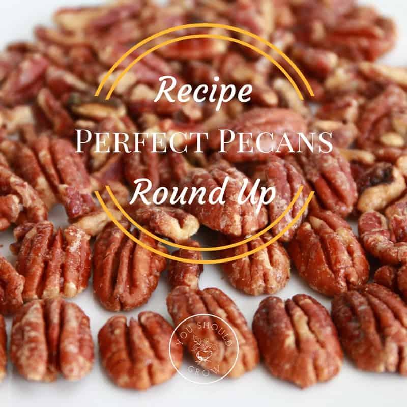 10 Ways To Eat Pecans: Pecan Recipe Roundup