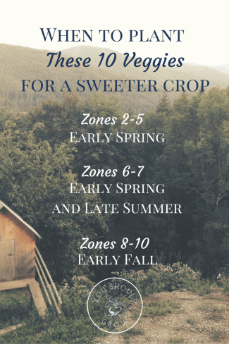 General guidelines for planting veggies that get sweeter after a frost at YouShouldGrow.com