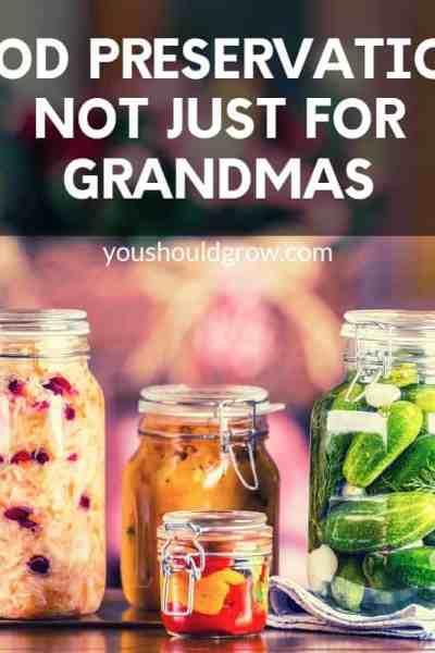 Food preservation: not just for grandmas