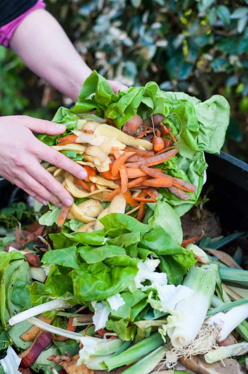 Raw fruits and vegetables being added to a compost pile.