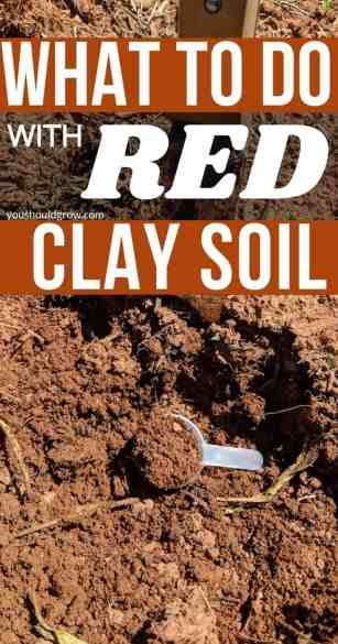 what to do with red clay soil pin