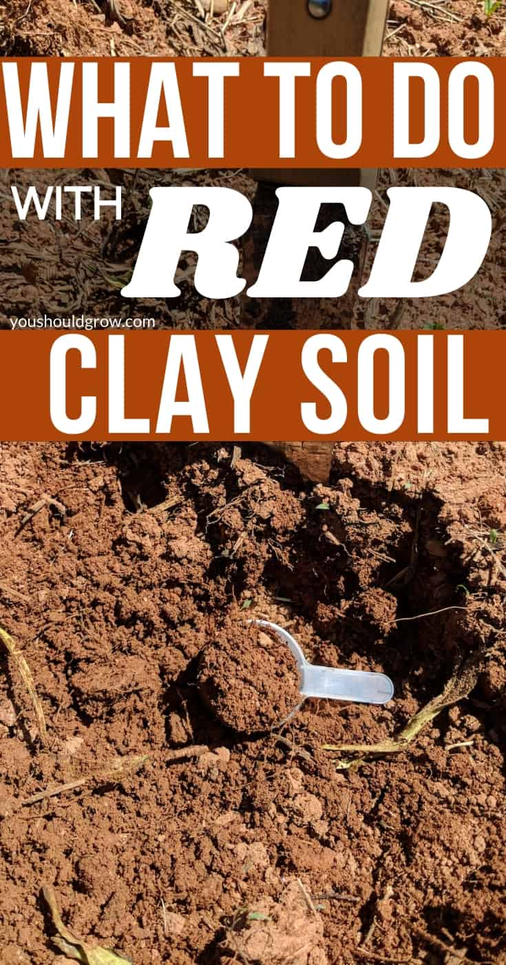 Improve clay soil for vegetable plants and landscape gardening. Learn what amendments to use to improve drainage and texture of red clay.