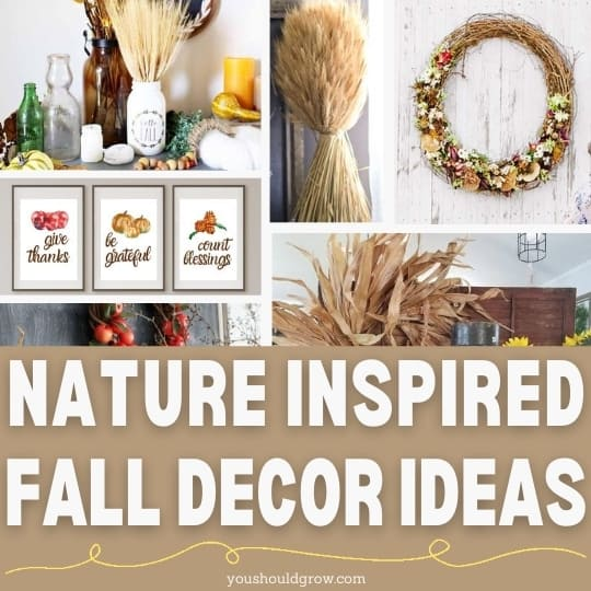 fall decorating ideas for 2020 feature