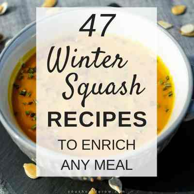 47 Winter Squash Recipes You Have To Try