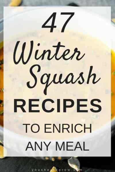 47 winter squash recipes