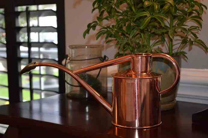 Copper haws watering can