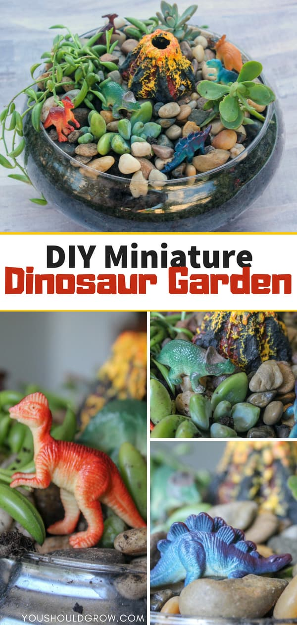 Miniature dinosaur garden diy: make this fairy garden for boys filled with succulent plants, mini dinos, and a volcano!