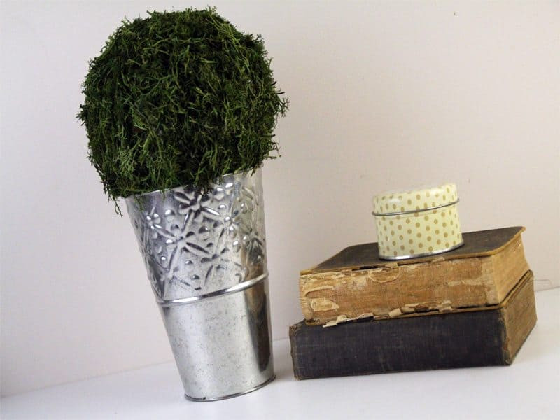 diy moss ball decor