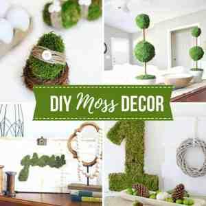 20+ DIY Moss Decor Ideas For Spring