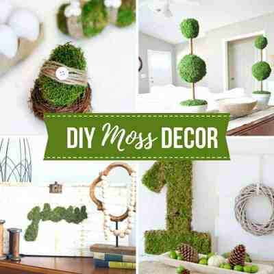 20+ DIY Moss Decor Ideas For Spring