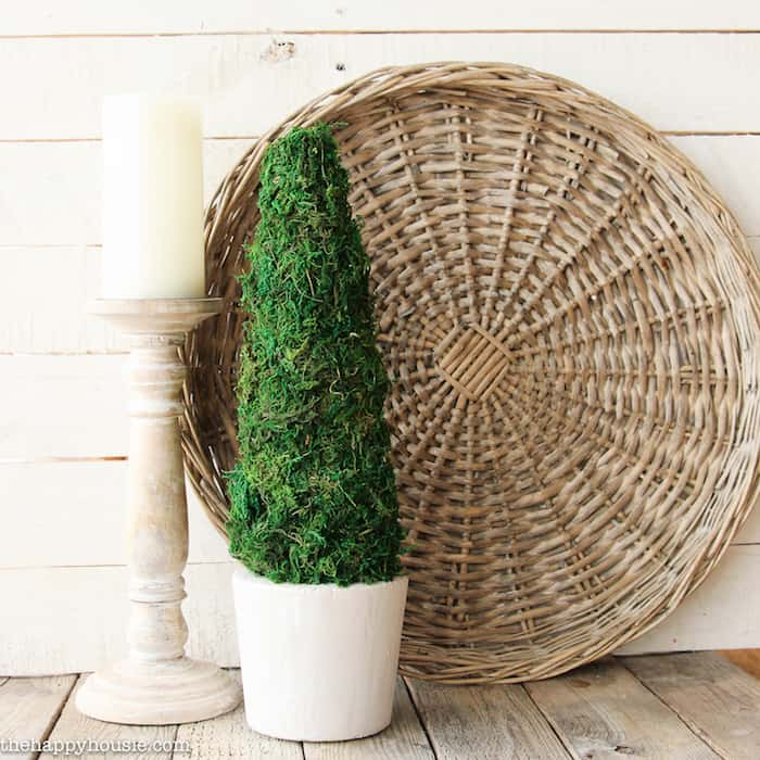 Moss decor ideas: diy topiary project
