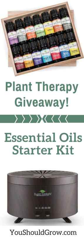Plant Therapy Giveaway! Essential oils starter kit 7&7 essential oils kit + AromaFuse Diffuser
