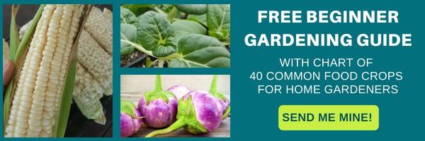 Free Beginner Gardening Guide