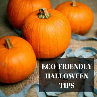 Tips To Have An Eco-Friendly Halloween
