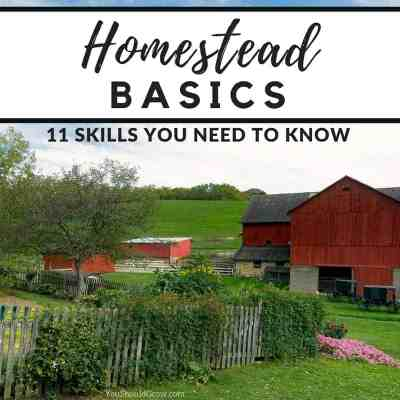 Homesteading Basics: 11 Skills You Need To Know