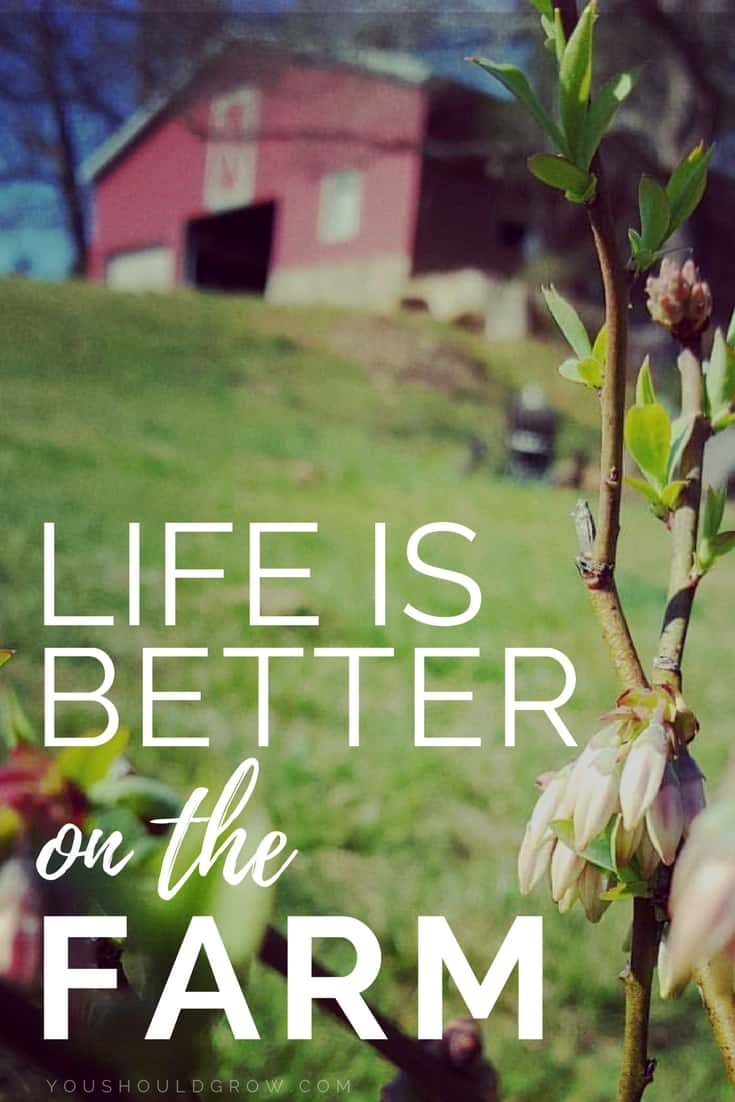 Life is better on the farm text over image of a farm with red barn