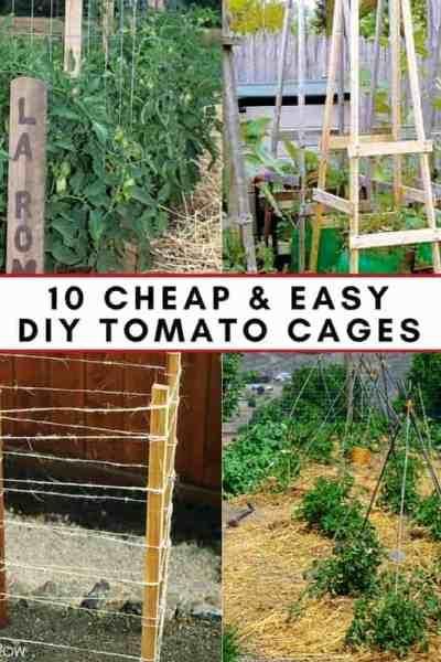 Tomato Cages 10 DIY Ideas