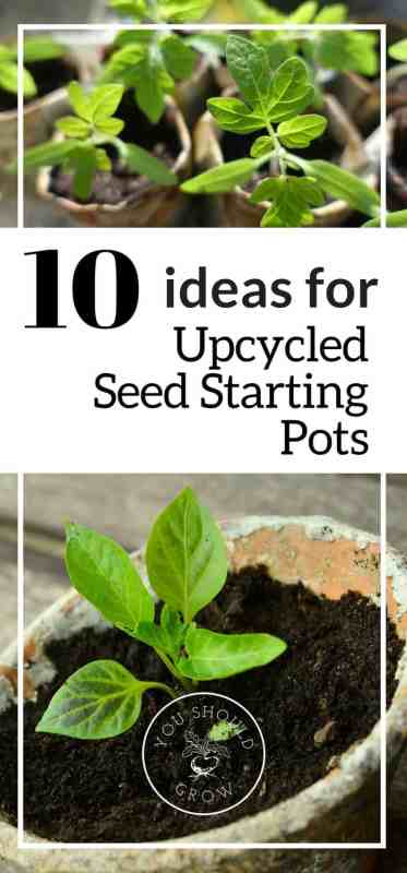 10 upcycled seed starting pots.