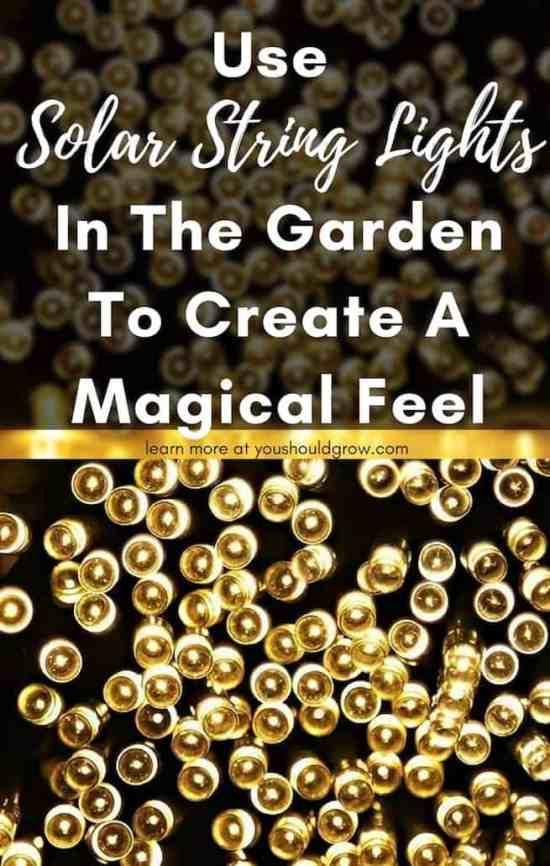 Patio decor. Garden decor. Use solar string lights in the garden to create a magical feeling.