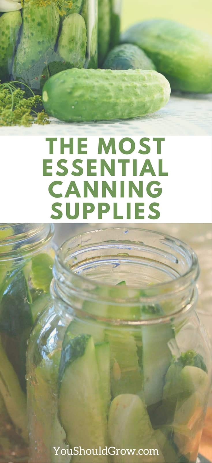 Bed Bath Beyond Canning Supplies