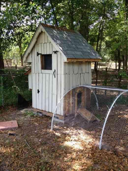 Adorable DIY pallet chicken coop