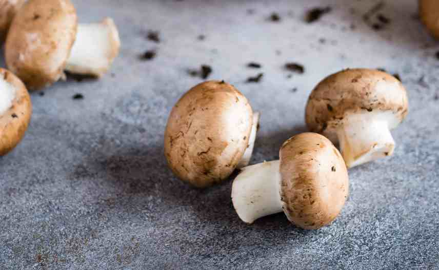 Mushrooms are a great option for making a profit from vegetable gardening.
