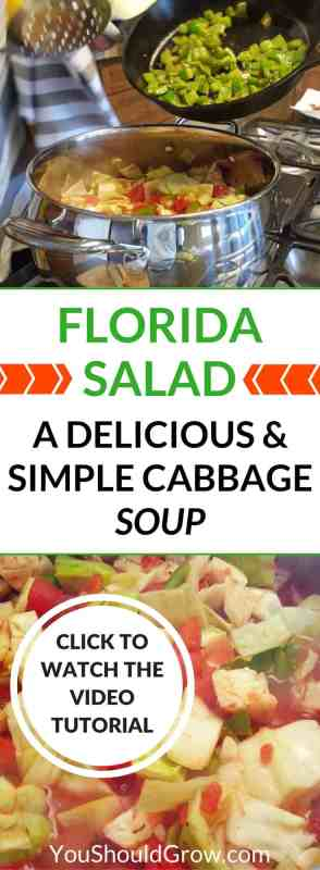 A delicious and simple cabbage soup recipe uniquely name Florida Salad