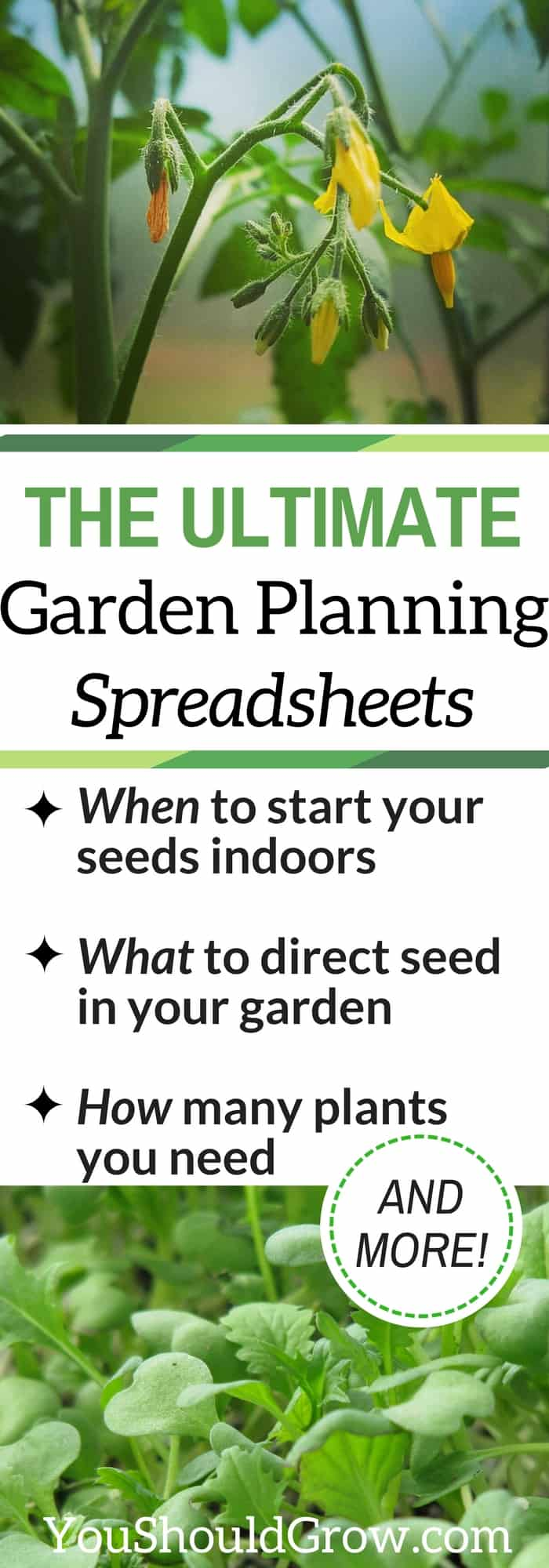 Planning a backyard vegetable garden? Learn when to start seeds, direct seed, & how many plants you need. Get customized planting dates for your spring garden and fall garden.
