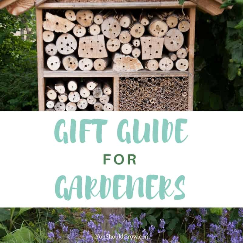 Christmas Gifts For Gardeners: 16 Unique And Useful Ideas