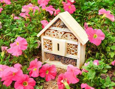 Backyard vegetable gardening: Beneficial insects are improtant for gardeners. Give them a gift that helps create a healthier garden with this insect hotel.