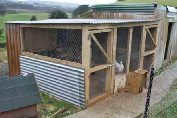 homemade chicken coop picture