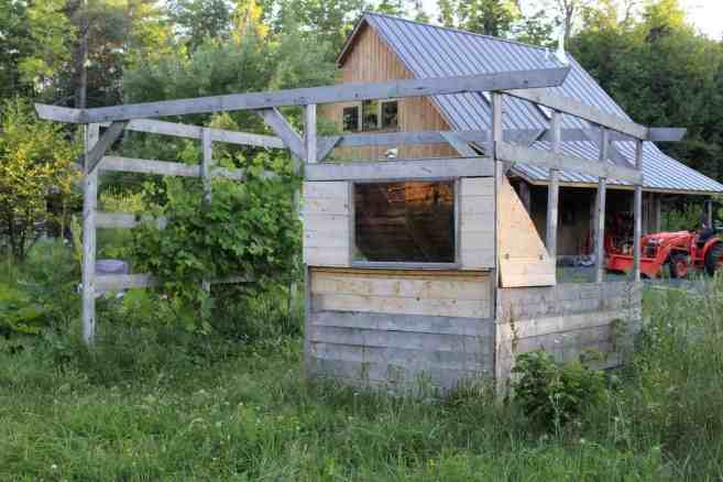 chicken coop with compost bin and grape arbor