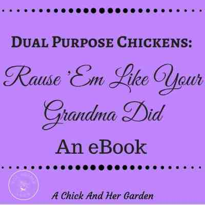 Book Review: 'Dual Purpose Chickens: Raise 'Em Like Your Grandma Did'