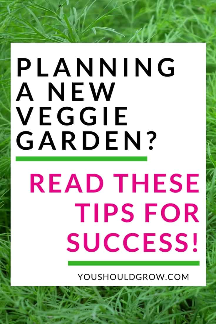Gardening for beginners: How to start a new vegetable and herb garden.