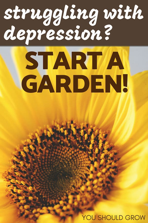 If you're struggling with depression, start a garden! Image of sunflower with text