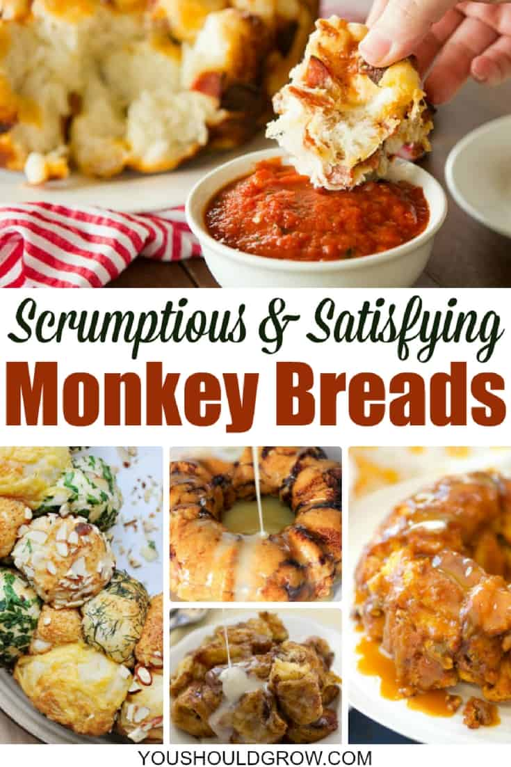 Gooey monkey bread is an indulgence that's always a hit at family dinners, potlucks, and even breakfast!So these delicious sweet and savory monkey bread recipes are perfect for holiday gatherings of all varieties. All that soft, fluffy bread mixed up with tantalizing ingredients - it is absolutely irresistible. It invites you to stand around the table, pulling off mouth-watering chunks of bread to savor as you enjoy conversations with friends.
