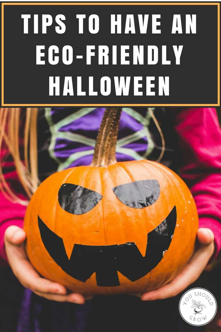 Worried about your impact on the environment this Halloween? Here are some great tips for making this fun holiday more eco-friendly.