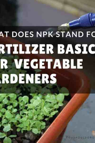Backyard vegetable gardening: What does NPK stand for and other fertilizer basics
