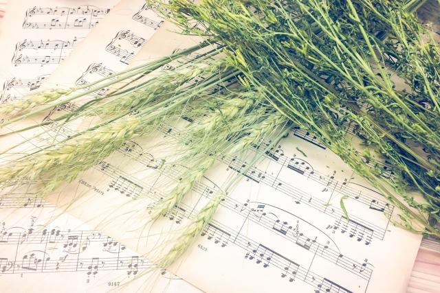 花 を さがす 少女 楽譜