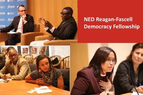 Apply for NED Reagan-Fascell Democracy Fellowship 2017 in USA