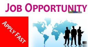 latest-jobs-opportunity-at-